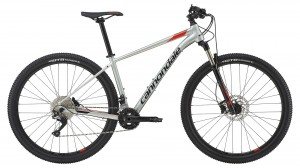 Rower Cannondale Trail 29 4 sage gray/acid red 2019