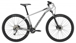 Rower Cannondale Trail 29 6 meteor gray/jet black 2019